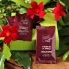 fleurs de la jungle box the envouthe envoutheque