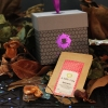 mystere des bois box the envouthe envoutheque