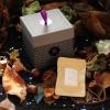chant de phoenix box the envouthe envoutheque