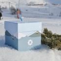 Box de Janvier (box du mois en cours)