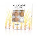 Sucre Français Théière Pur Canne
