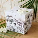 Box Amazonie (box du mois)