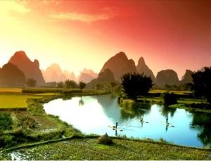 paysage asie box the envouthe