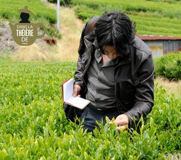 Guillaume Leleu dans une plantation de thé