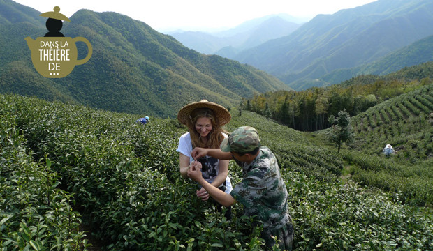 Lydia Gautier dans une plantation de thé