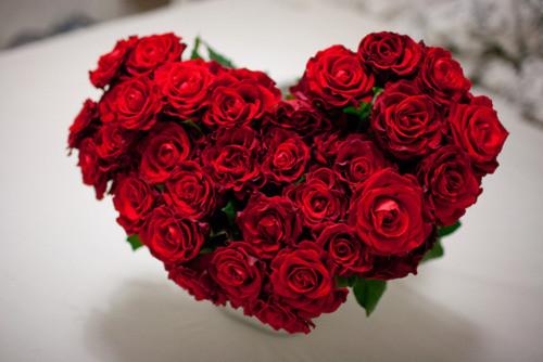Un bouquet de roses rouges en forme de coeur