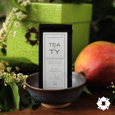 Le trésor de La Buse de TEA & TY dans la Box Terrible Jungle