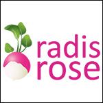 radis-rose
