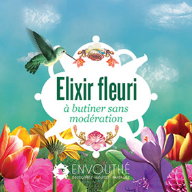 elixir fleuri box de the envouthe